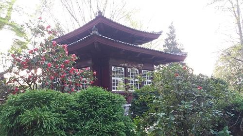 Der japanische Garten in Leverkusen